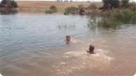 pesca_2011_18