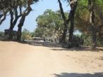 Badoca Safari Park :: badoca_26