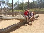 Badoca Safari Park :: badoca_53